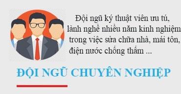 doi-ngu-chuyen-nghiep